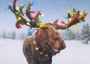 "Inside caption: ""Merry Christmoose!"""