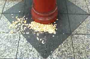 Lucky dump of pistachio shells on subway platform.