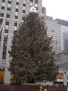 85 foot 27 ton Norway Spruce attention whore in Rockefeller Center.