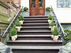 Nice display of stoop trees, but anyone needing to hold onto the banister is out of luck.