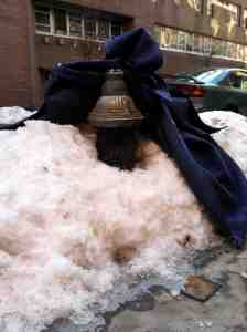 My block's hydrant: buried in its own blizzard with a furniture blanket as accent.